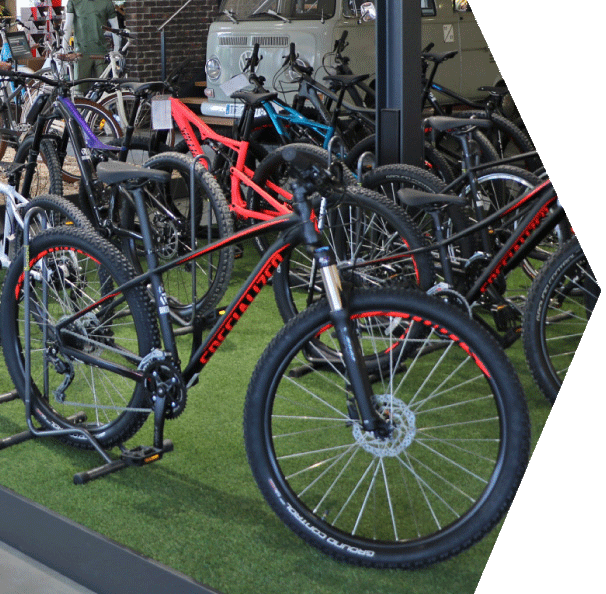 Specialized Mountainbikes